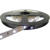 BANDA LED 60 x 3528 4.8W IP20 CW
