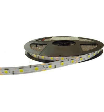 BANDA LED 60 x 5050 14.4W IP20 CW