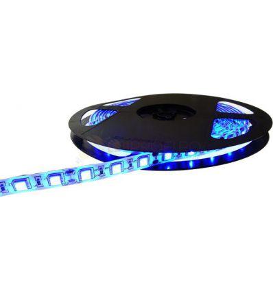 BANDA LED 60 x 3528 4.8W IP20 BLUE