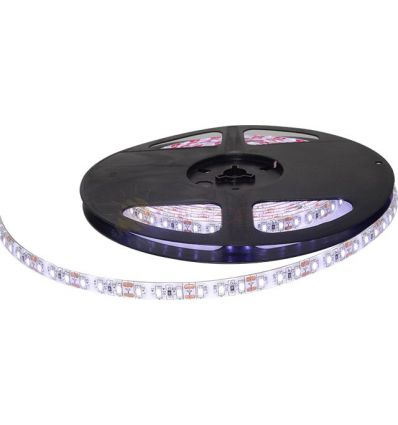 BANDA LED 120 x 3014 12W IP65 CW