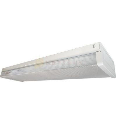 CORP NEON LED FIDA 2x600 MM IP40