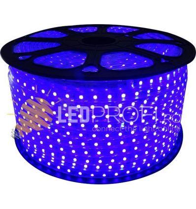 BANDA LED ALBASTRA 60X5050 230V