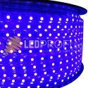 BANDA LED ALBASTRA 60X5050 220V