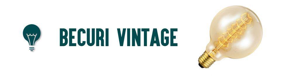 Becuri Vintage Edison